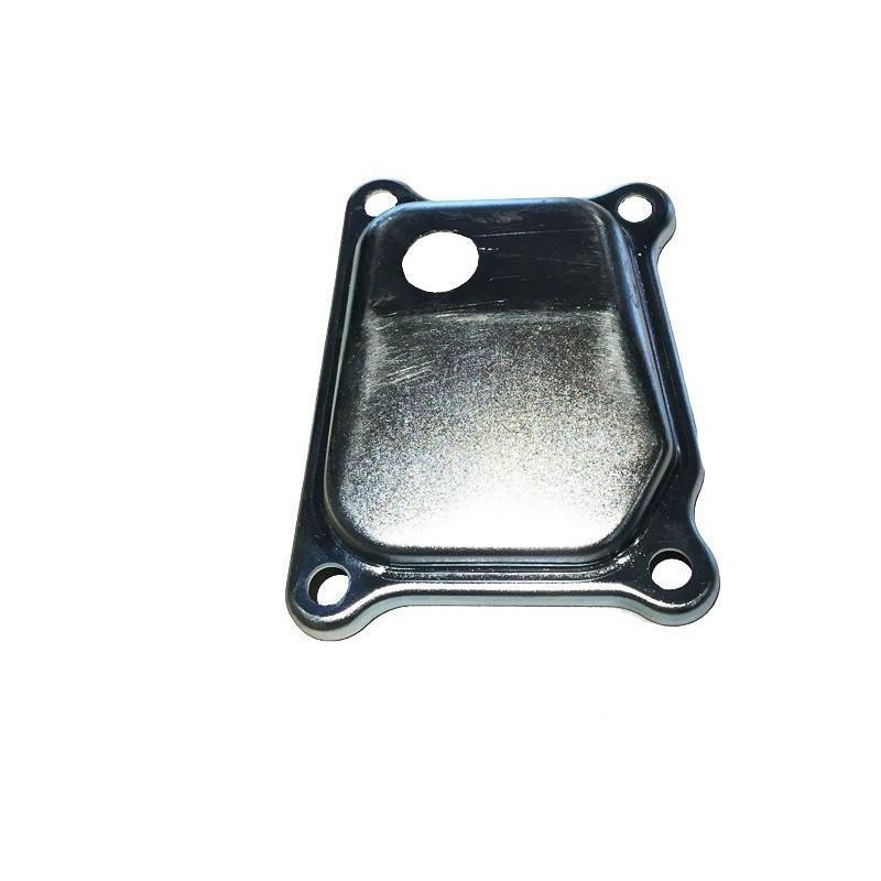 Couvercle de valves TECUMSEH 36305