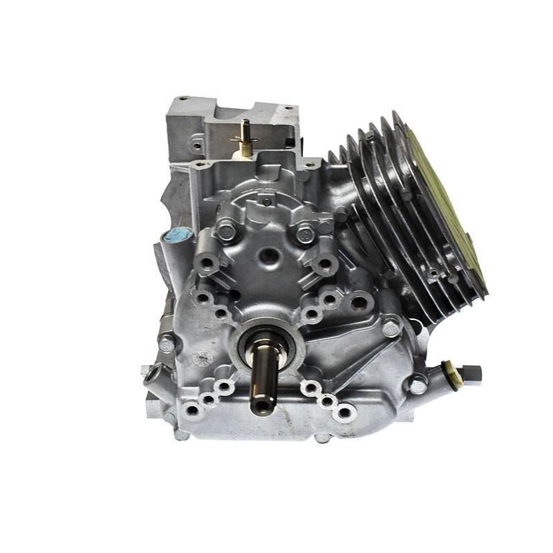 Bloc moteur de remplacement Briggs Stratton 794910