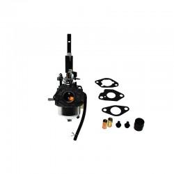 Carburateur Ariens 20001382
